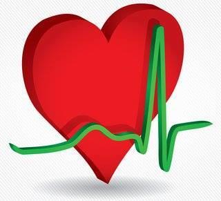 HLR-utbildning: Hjärtsäkra Brännö